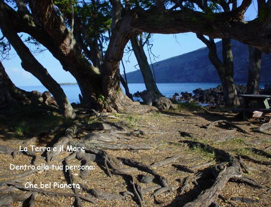 La Terra e il Mare Dentro alla tua persona: Che bel Pianeta