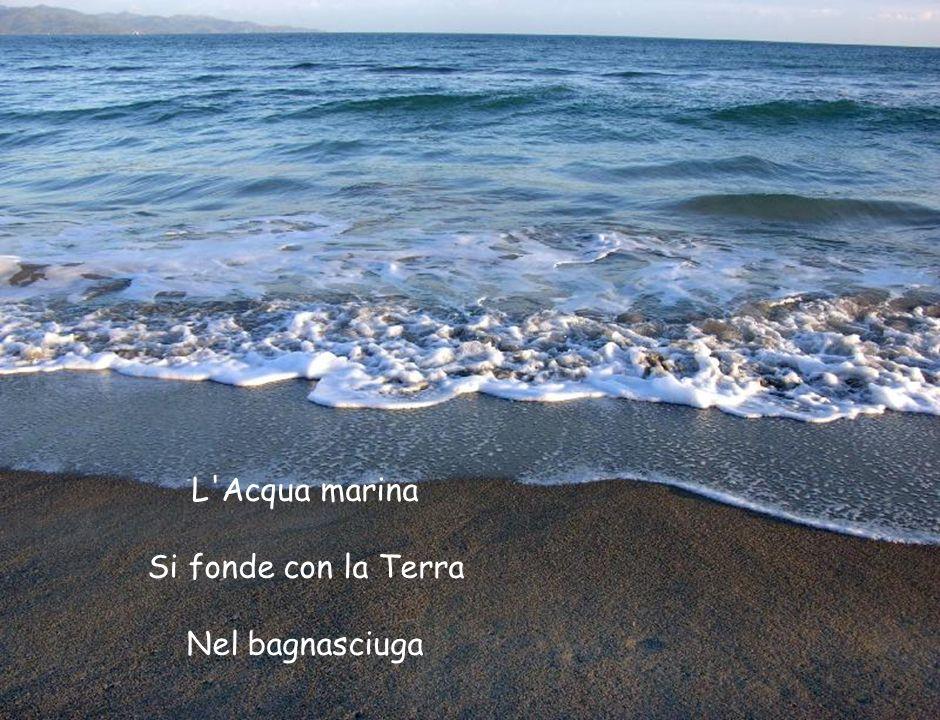 L'Acqua marina Si fonde con la Terra Nel bagnasciuga
