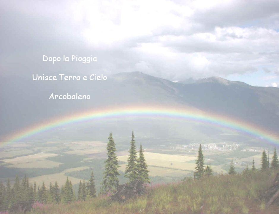 Dopo la Pioggia Unisce Terra e Cielo Arcobaleno