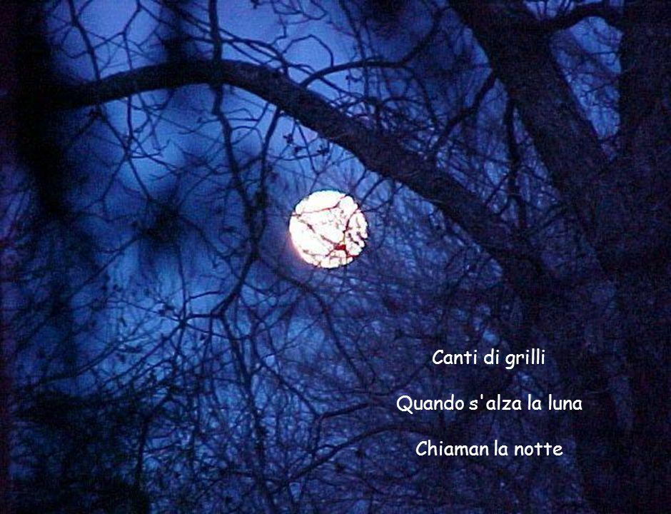 Canti di grilli Quando s'alza la luna Chiaman la notte