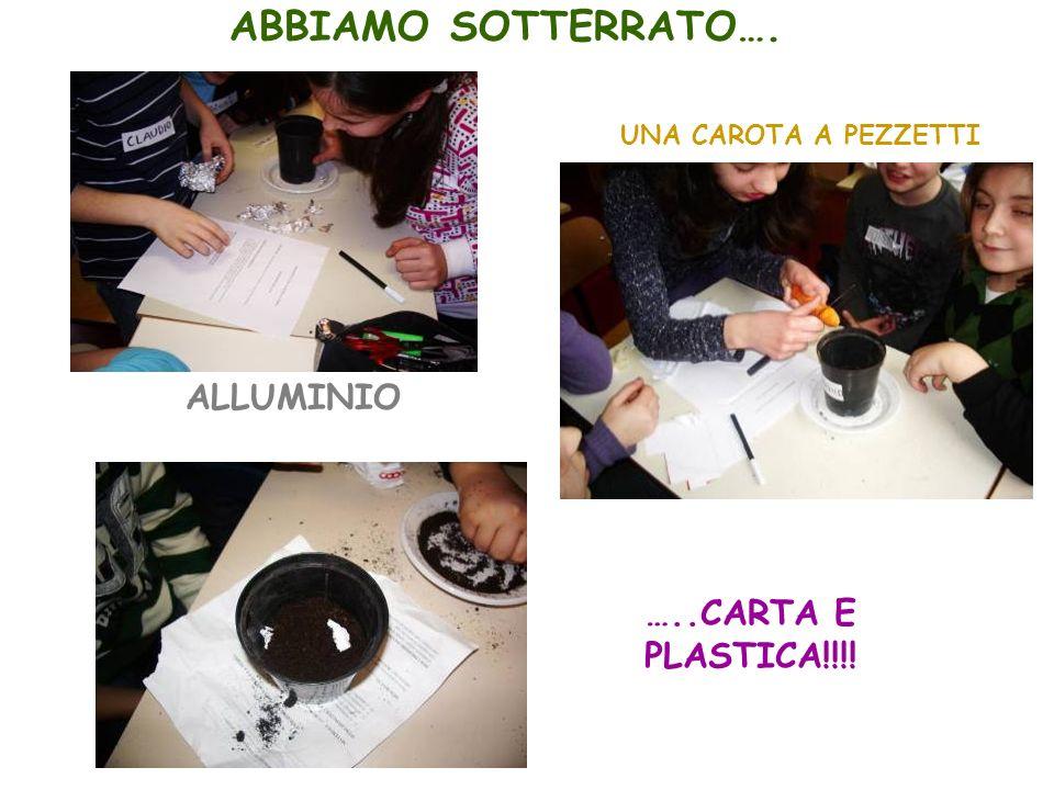 ALLUMINIO UNA CAROTA A PEZZETTI …..CARTA E PLASTICA!!!! ABBIAMO SOTTERRATO….