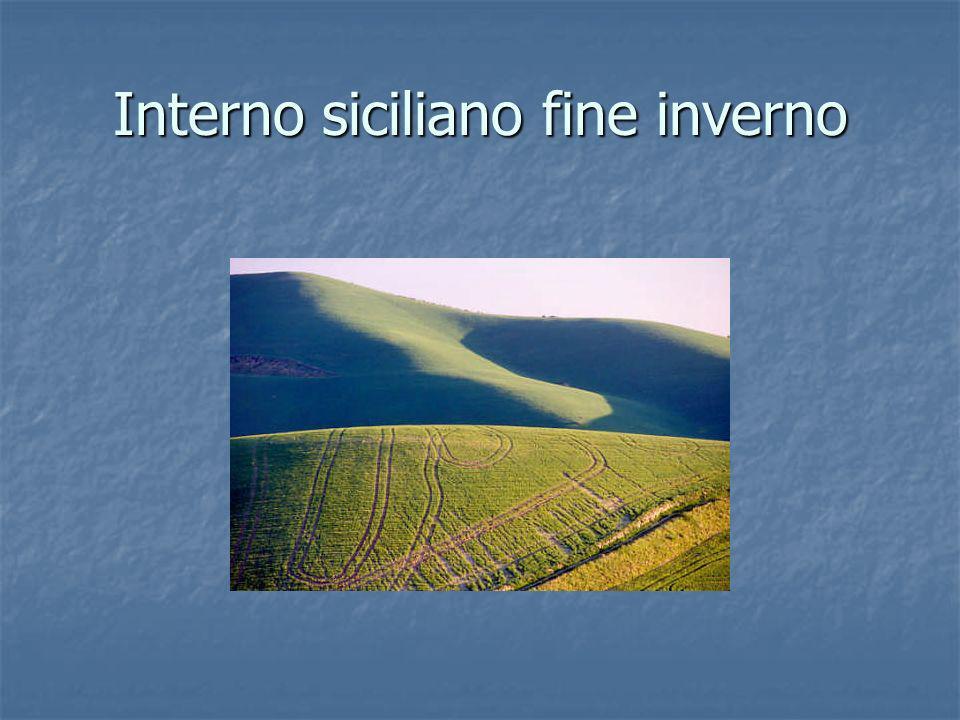 Interno siciliano fine inverno