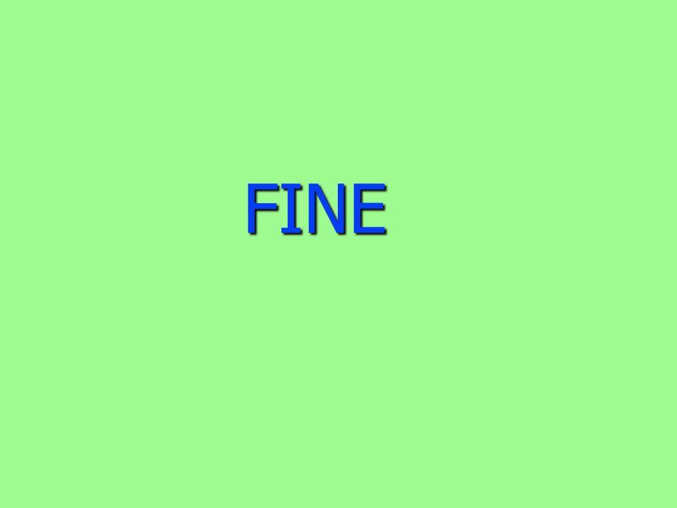 FINE FINE