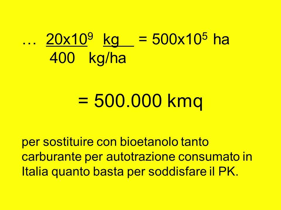… 20x10 9 kg = 500x10 5 ha 400 kg/ha = 500.000 kmq per sostituire con bioetanolo tanto carburante per autotrazione consumato in Italia quanto basta pe