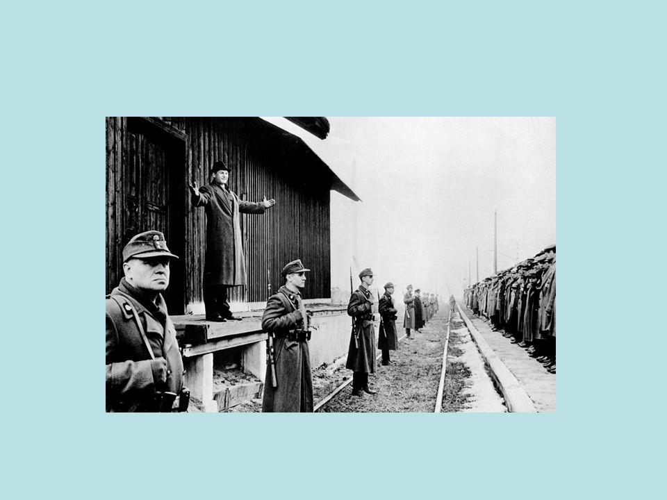 Lo sterminio degli ebrei Quando, il 27 gennaio 1945, lArmata Rossa fece il suo ingresso nel campo di concentramento di Auschwitz, i soldati rimasero terrorizzati da ciò che videro e fotografarono.