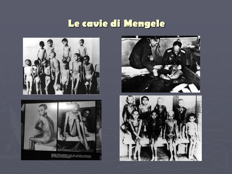 Le cavie di Mengele