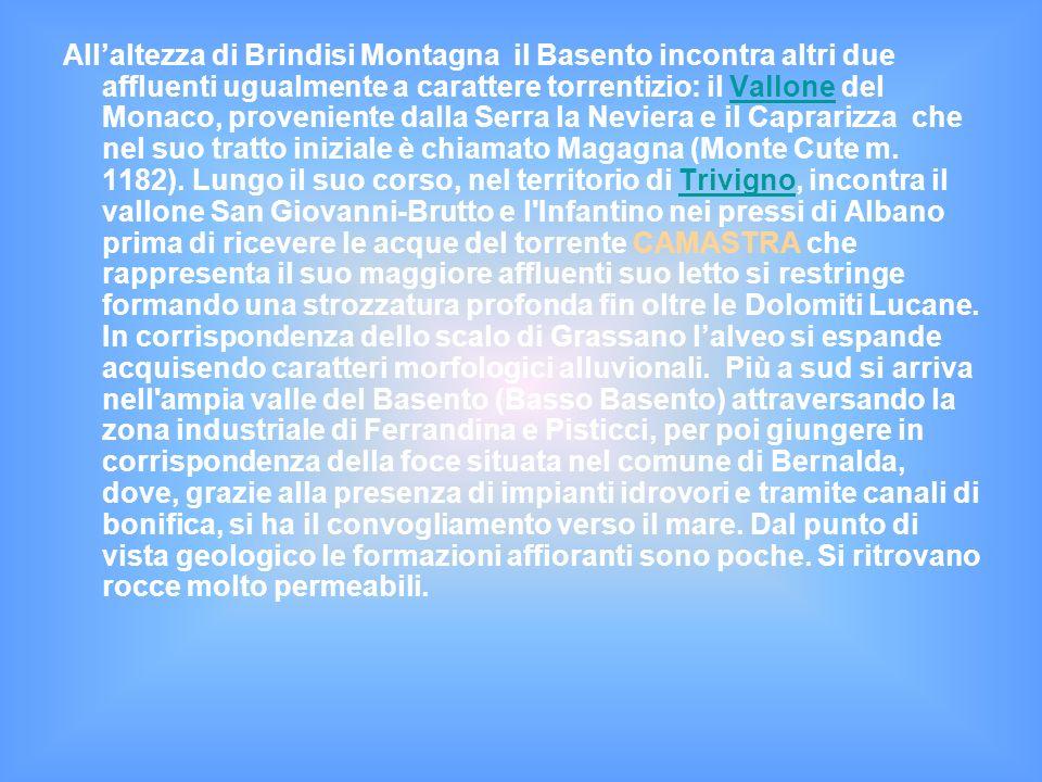 Allaltezza di Brindisi Montagna il Basento incontra altri due affluenti ugualmente a carattere torrentizio: il Vallone del Monaco, proveniente dalla Serra la Neviera e il Caprarizza che nel suo tratto iniziale è chiamato Magagna (Monte Cute m.