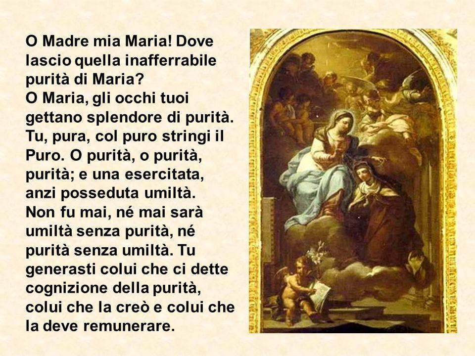 O Madre mia Maria.Dove lascio quella inafferrabile purità di Maria.