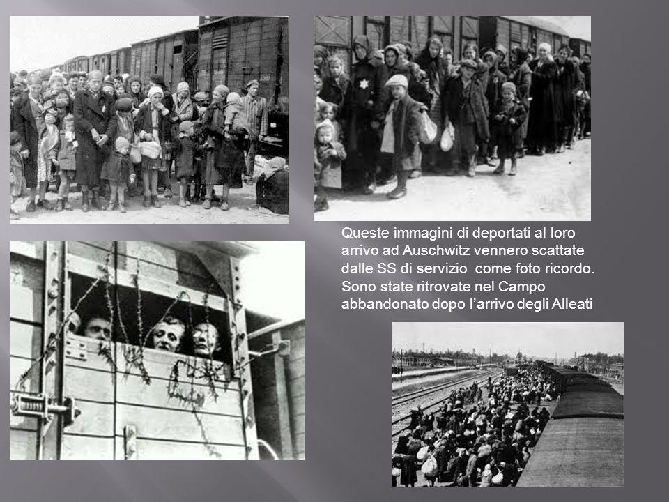 Queste immagini di deportati al loro arrivo ad Auschwitz vennero scattate dalle SS di servizio come foto ricordo. Sono state ritrovate nel Campo abban