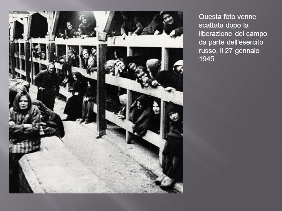 Questa foto venne scattata dopo la liberazione del campo da parte dellesercito russo, il 27 gennaio 1945