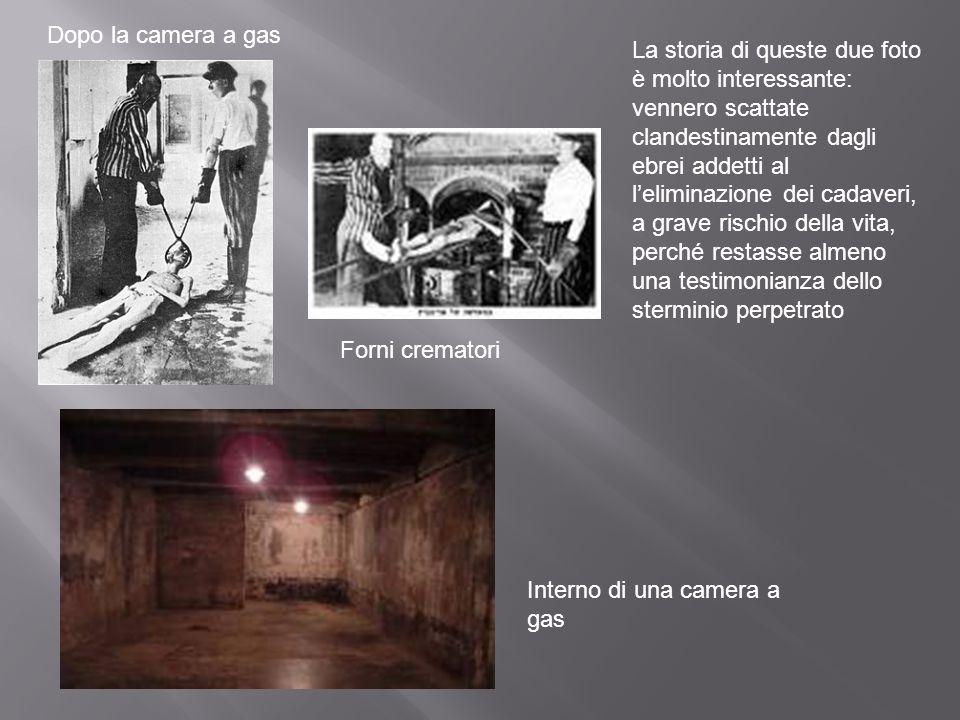 Dopo la camera a gas Interno di una camera a gas Forni crematori La storia di queste due foto è molto interessante: vennero scattate clandestinamente