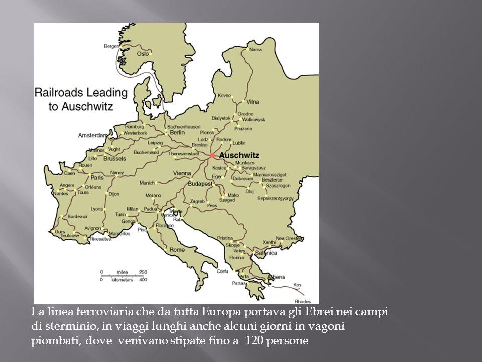 La linea ferroviaria che da tutta Europa portava gli Ebrei nei campi di sterminio, in viaggi lunghi anche alcuni giorni in vagoni piombati, dove veniv