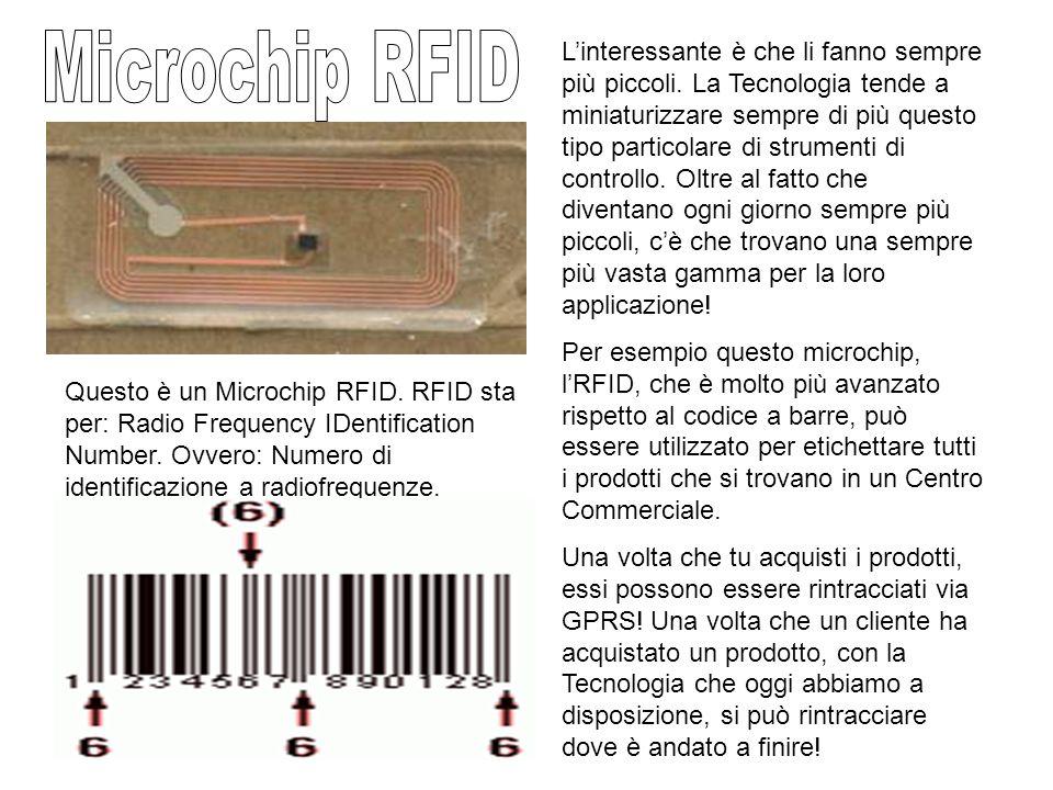 Il Microchip in questione, è delle dimensioni di un chicco di riso. Come puoi vedere dai raggi X, esso si rileva nella posizione sotto la cute della m