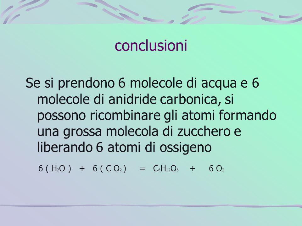 conclusioni Se si prendono 6 molecole di acqua e 6 molecole di anidride carbonica, si possono ricombinare gli atomi formando una grossa molecola di zu