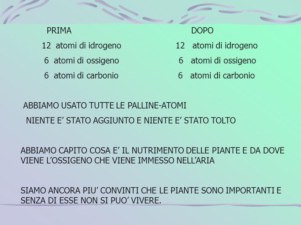 PRIMA DOPO 12 atomi di idrogeno 12 atomi di idrogeno 6 atomi di ossigeno 6 atomi di ossigeno 6 atomi di carbonio 6 atomi di carbonio ABBIAMO USATO TUT
