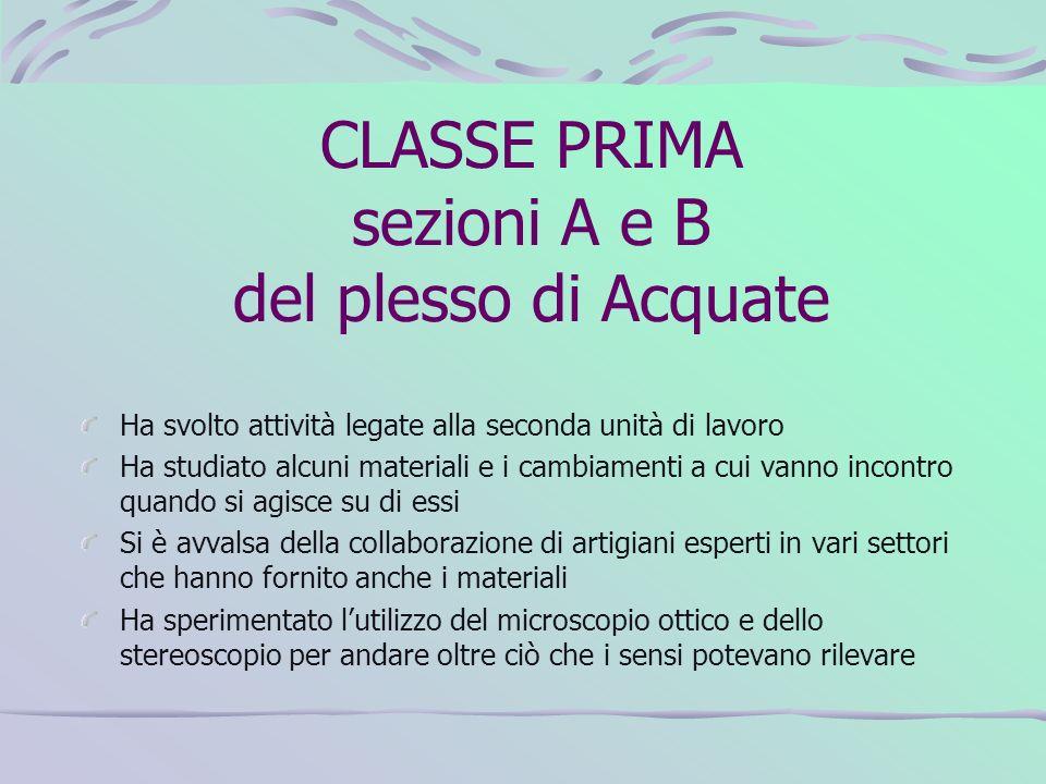 CLASSE PRIMA sezioni A e B del plesso di Acquate Ha svolto attività legate alla seconda unità di lavoro Ha studiato alcuni materiali e i cambiamenti a