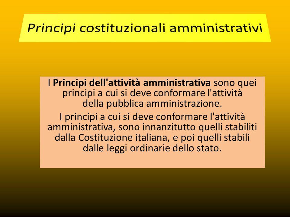 I Principi dell'attività amministrativa sono quei principi a cui si deve conformare l'attività della pubblica amministrazione. I principi a cui si dev