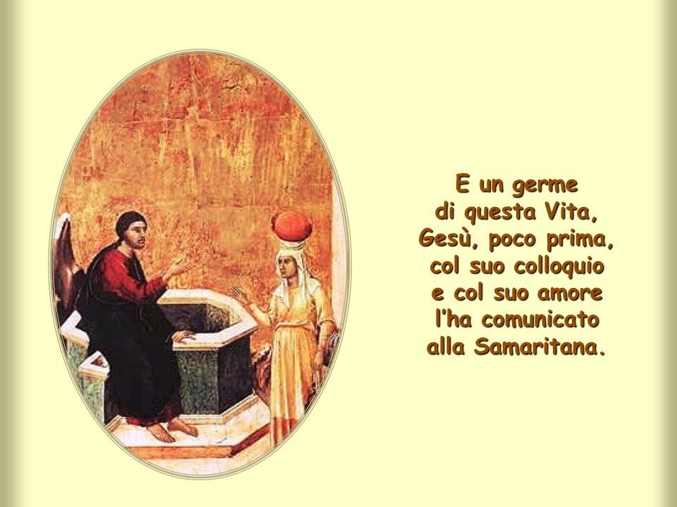 Gesù considera suo cibo fare la volontà del Padre, perché, attuandola,