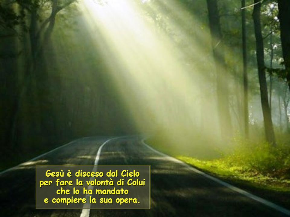 Gesù è disceso dal Cielo per fare la volontà di Colui che lo ha mandato e compiere la sua opera.