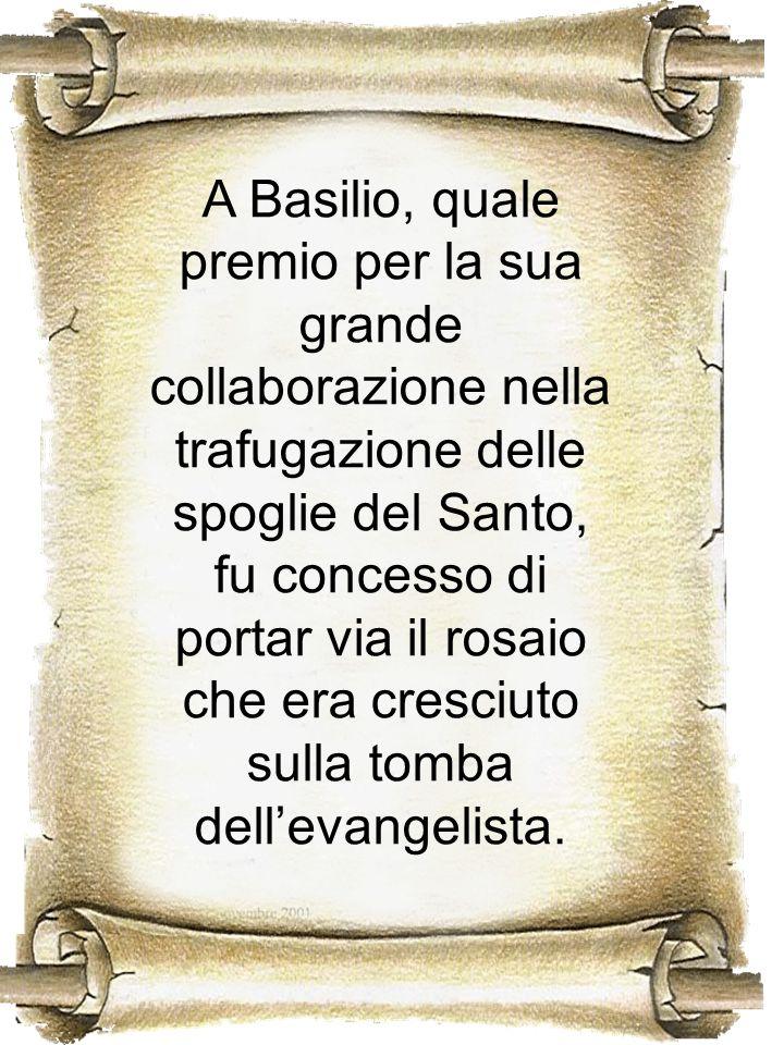 A Basilio, quale premio per la sua grande collaborazione nella trafugazione delle spoglie del Santo, fu concesso di portar via il rosaio che era cresc