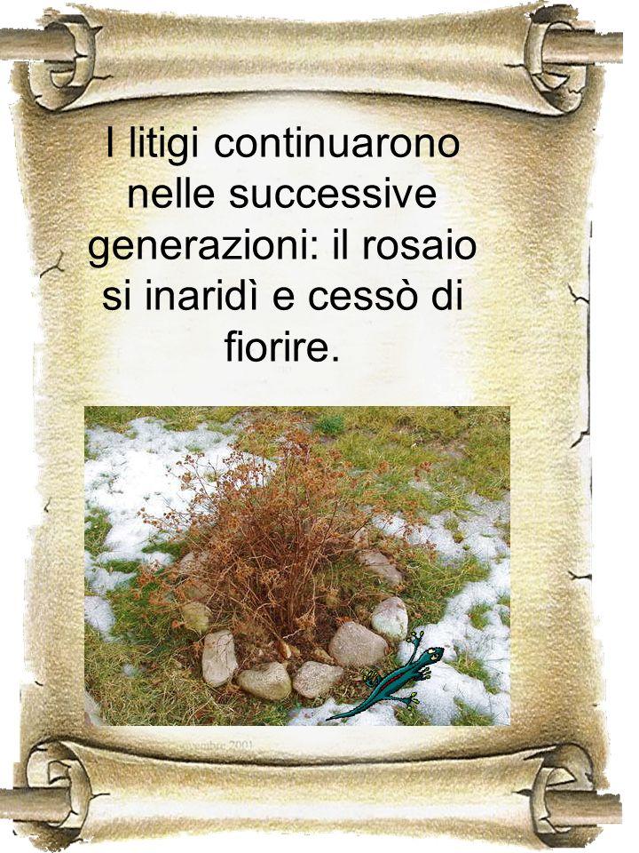 I litigi continuarono nelle successive generazioni: il rosaio si inaridì e cessò di fiorire.