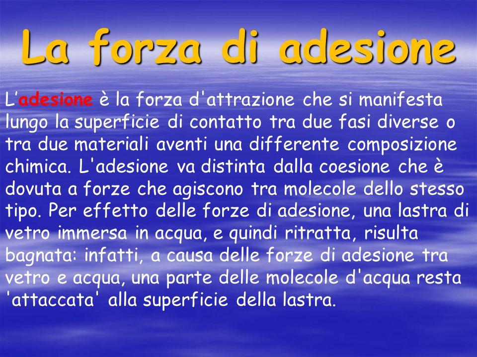La forza di adesione Ladesione è la forza d attrazione che si manifesta lungo la superficie di contatto tra due fasi diverse o tra due materiali aventi una differente composizione chimica.