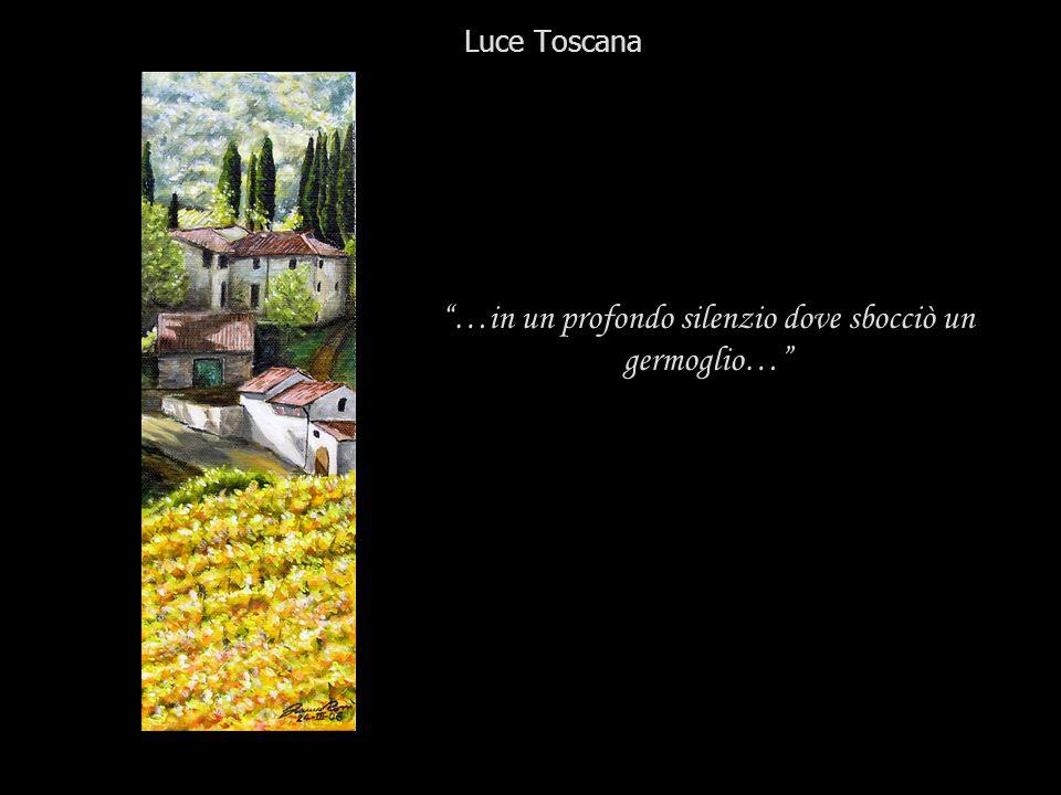 …in un profondo silenzio dove sbocciò un germoglio… Luce Toscana