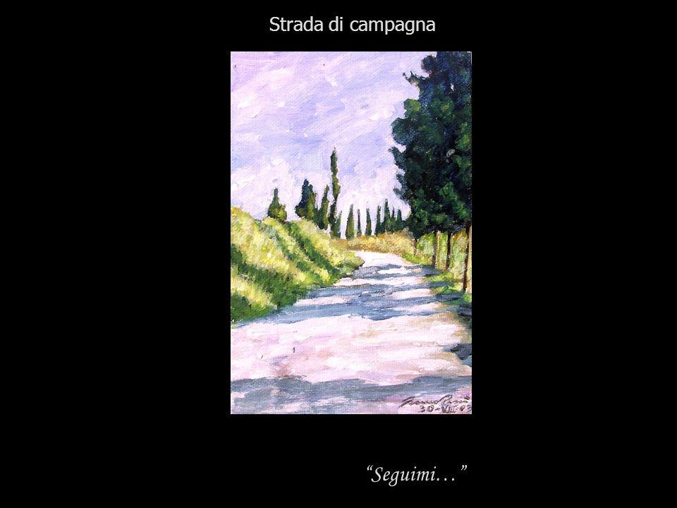 Seguimi… Strada di campagna