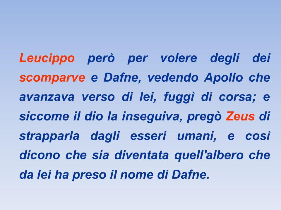 Dafne vittima di un amore che non corrisponde Apollo non tiene conto della volontà di Dafne e la insegue fino alle estreme conseguenze.