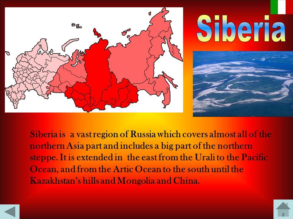 La Siberia è una vasta regione della Russia che copre quasi tutta l'Asia settentrionale e comprende una grande parte della steppa euro-asiatica. Si es