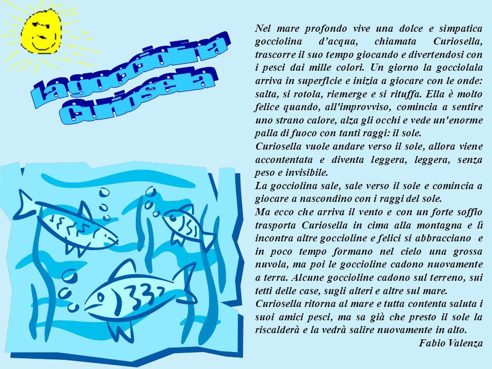 Nel mare profondo vive una dolce e simpatica gocciolina dacqua, chiamata Curiosella, trascorre il suo tempo giocando e divertendosi con i pesci dai mi