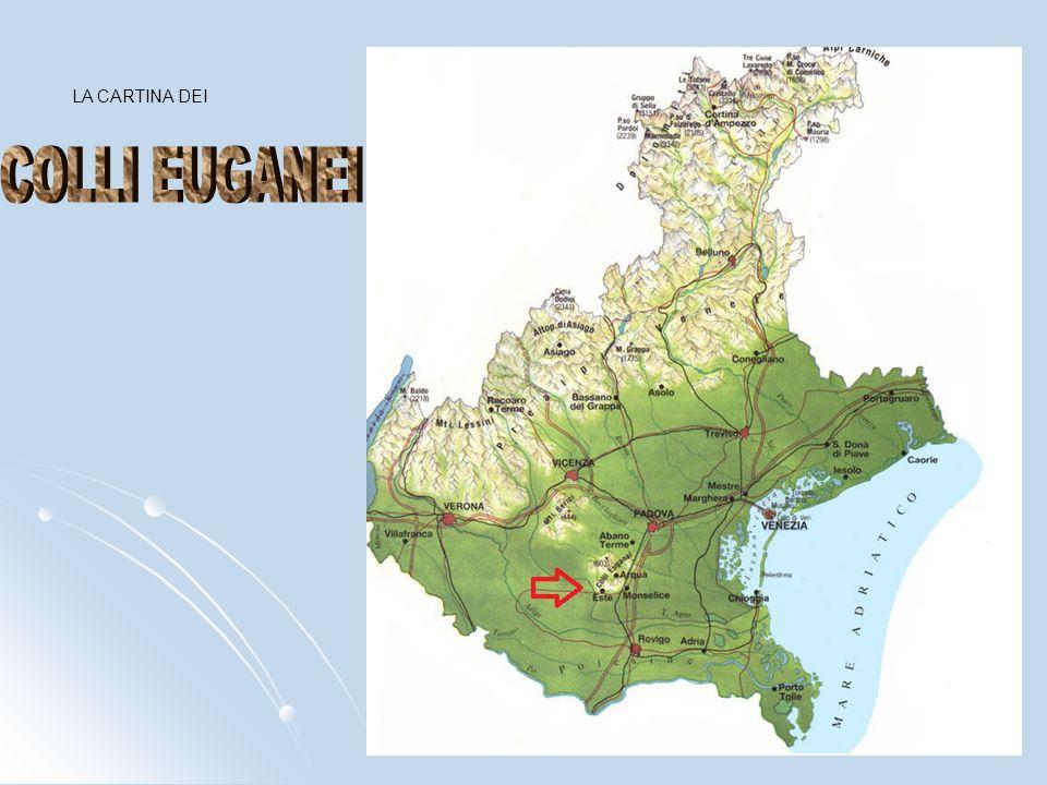 I Colli Euganei sono un gruppo di colline di origine vulcanica che sorgono, quasi fossero un arcipelago, dalla pianura padano-veneta, pochi chilometri