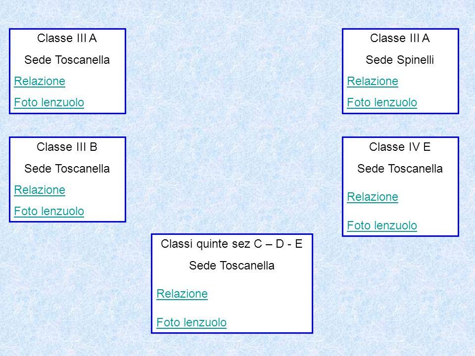 Classe III A Sede Toscanella Relazione Foto lenzuolo Classe III A Sede Spinelli Relazione Foto lenzuolo Classi quinte sez C – D - E Sede Toscanella Re
