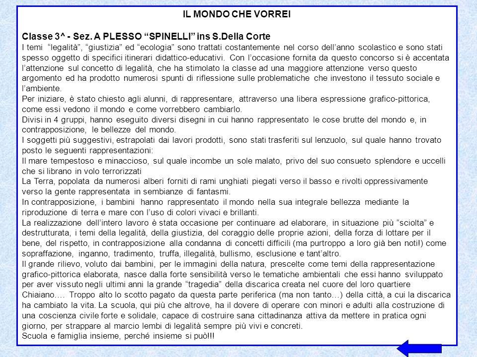 IL MONDO CHE VORREI CLASSE 3^B – Ins S.