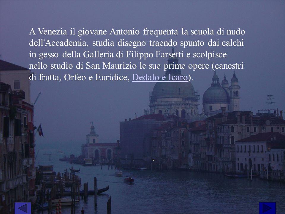 A Venezia il giovane Antonio frequenta la scuola di nudo dell'Accademia, studia disegno traendo spunto dai calchi in gesso della Galleria di Filippo F
