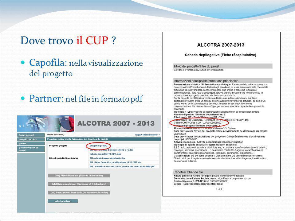 Dove trovo il CUP ? Capofila: nella visualizzazione del progetto Partner: nel file in formato pdf
