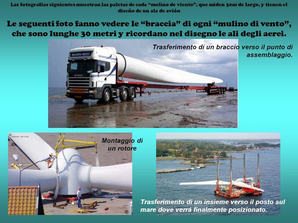 Las fotografías siguientes muestran las paletas de cada molino de viento, que miden 30m de largo, y tienen el diseño de un ala de avión Le seguenti fo