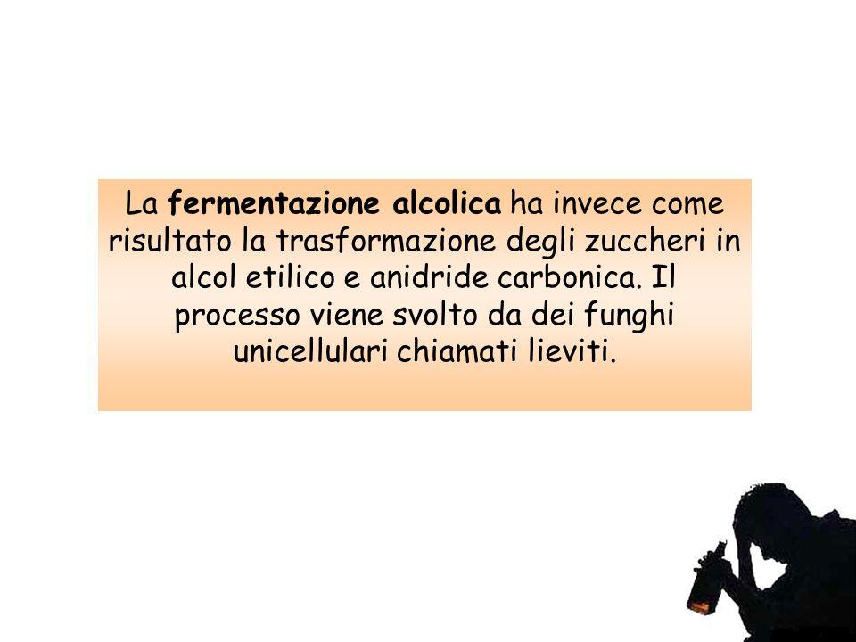La fermentazione alcolica ha invece come risultato la trasformazione degli zuccheri in alcol etilico e anidride carbonica.