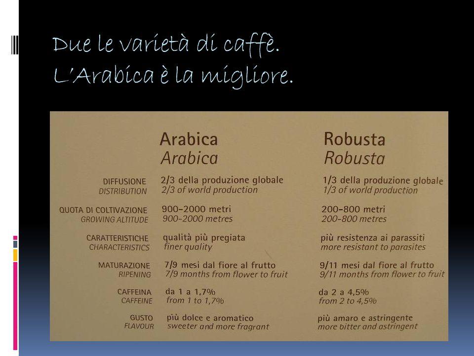 Due le varietà di caffè. LArabica è la migliore.
