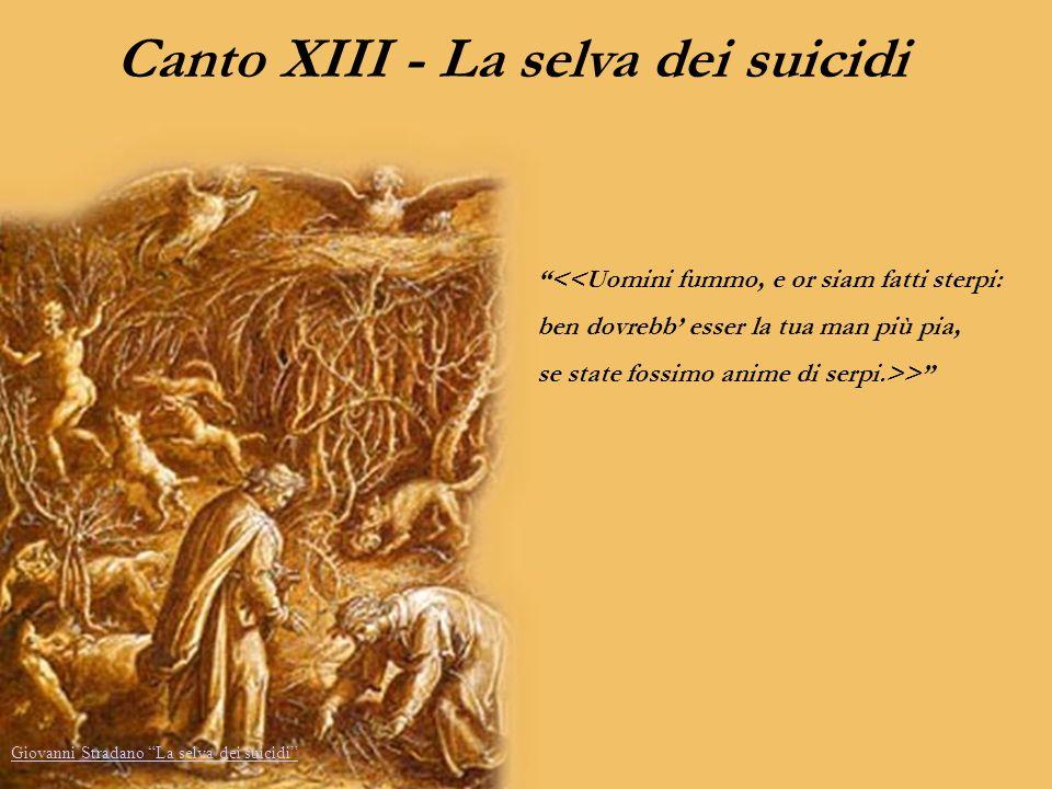 Canto XIII - La selva dei suicidi <<Uomini fummo, e or siam fatti sterpi: ben dovrebb esser la tua man più pia, se state fossimo anime di serpi.>> Gio