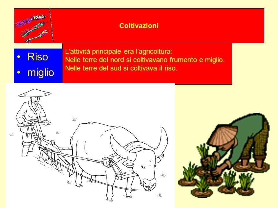 Coltivazioni Riso miglio Lattività principale era lagricoltura: Nelle terre del nord si coltivavano frumento e miglio. Nelle terre del sud si coltivav