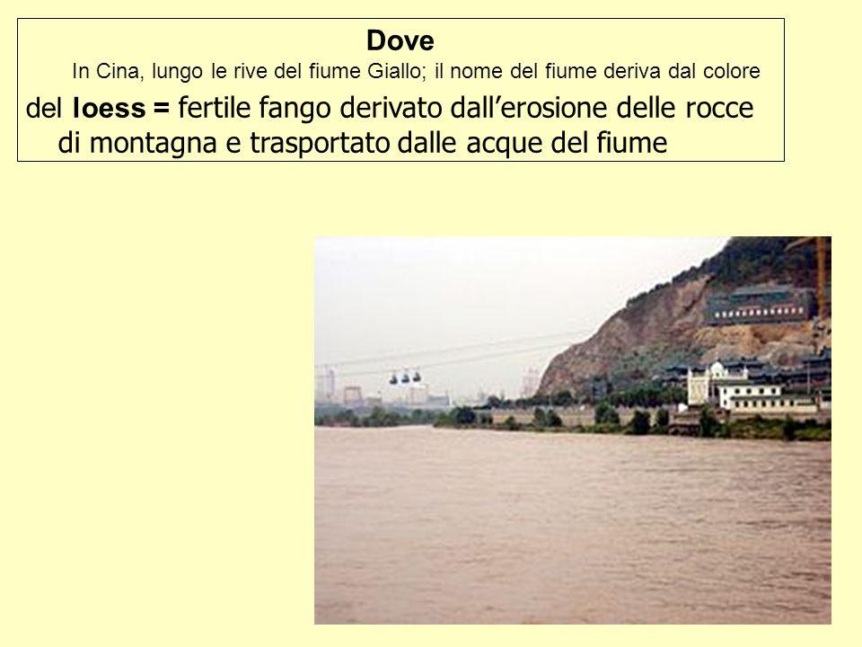 Dove In Cina, lungo le rive del fiume Giallo; il nome del fiume deriva dal colore del loess = fertile fango derivato dallerosione delle rocce di monta