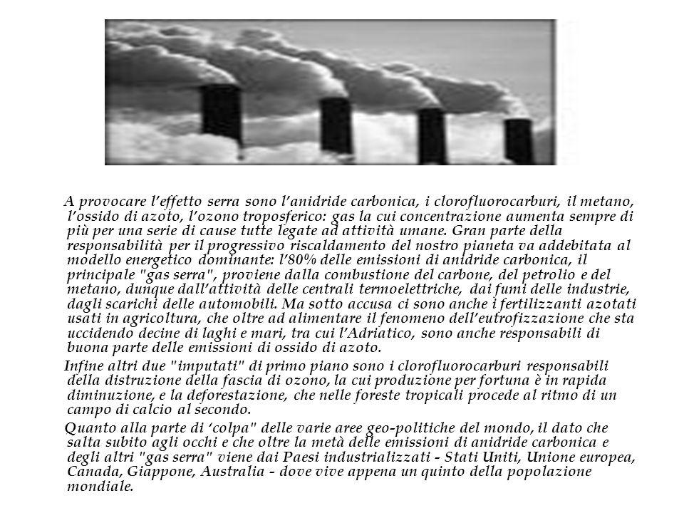 A provocare leffetto serra sono lanidride carbonica, i clorofluorocarburi, il metano, lossido di azoto, lozono troposferico: gas la cui concentrazione