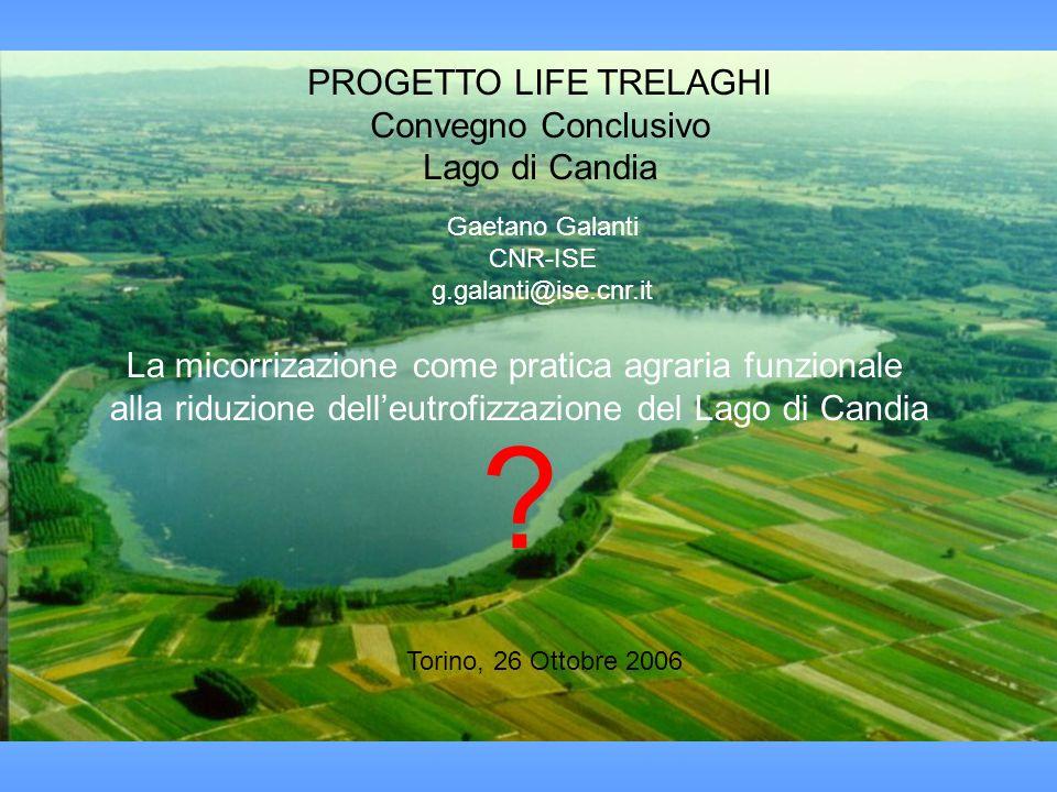 Foto del Lago & titolo del convegno PROGETTO LIFE TRELAGHI Convegno Conclusivo Lago di Candia Torino, 26 Ottobre 2006 La micorrizazione come pratica a