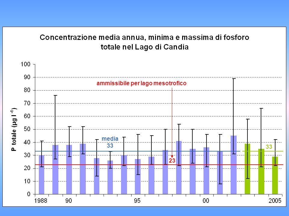 media 33 ammissibile per lago mesotrofico 23