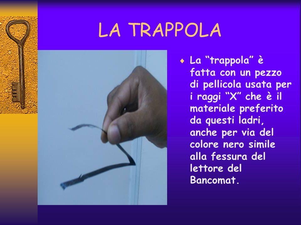 LA TRAPPOLA La trappola è fatta con un pezzo di pellicola usata per i raggi X che è il materiale preferito da questi ladri, anche per via del colore n