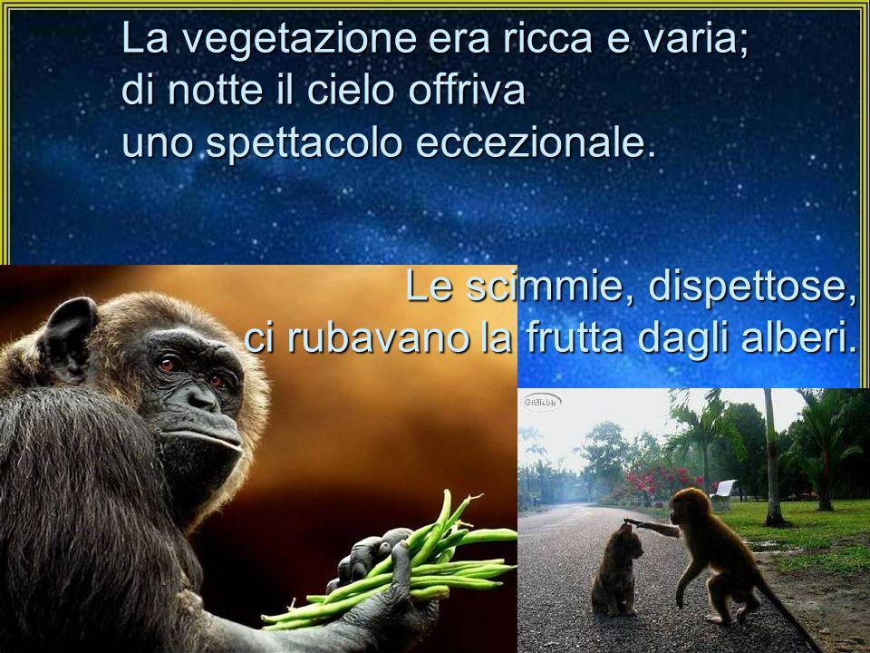 La vegetazione era ricca e varia; di notte il cielo offriva uno spettacolo eccezionale. Le scimmie, dispettose, ci rubavano la frutta dagli alberi.