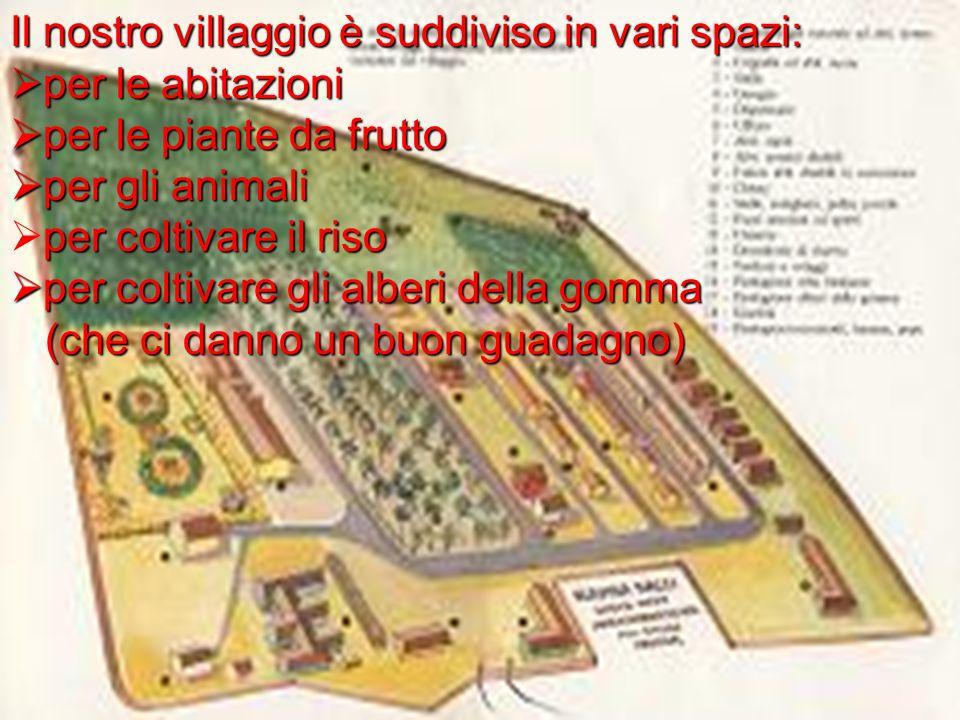 Il nostro villaggio è suddiviso in vari spazi: per le abitazioni per le abitazioni per le piante da frutto per le piante da frutto per gli animali per