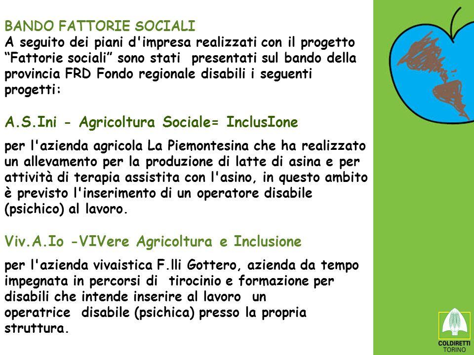 BANDO FATTORIE SOCIALI A seguito dei piani d'impresa realizzati con il progetto Fattorie sociali sono stati presentati sul bando della provincia FRD F