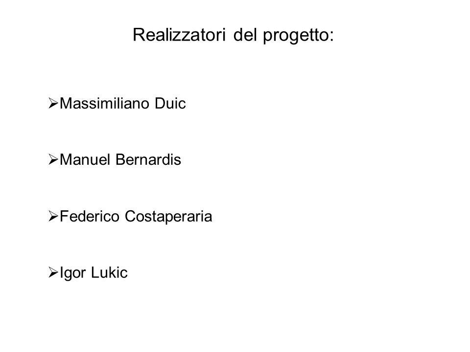 Massimiliano Duic Manuel Bernardis Federico Costaperaria Igor Lukic Realizzatori del progetto: